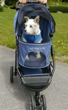 Walkin' Pet Stroller