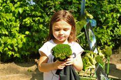 Kinderen meer broccoli, spruitjes, wortels laten eten? Een extra portie lol aan tafel kan nooit kwaad. Want broccoli vinden kinderen misschien saai, maar als je 'm naar de kapper stuurt, willen ze juist meer [...]
