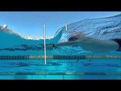 Coach Stuart McDougal - Total Immersion Swimming - YouTube