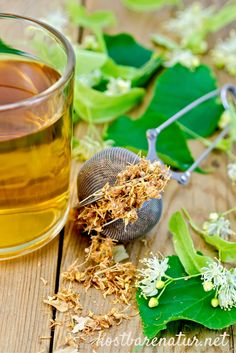Herbal tea from linden flowers in a mug with a strainer on the board Stock Photos , Healing Herbs, Medicinal Plants, Healthy Cooking, Healthy Life, Herbal Essences, Herbal Teas, Wild Edibles, Flower Tea, Healthy Beauty