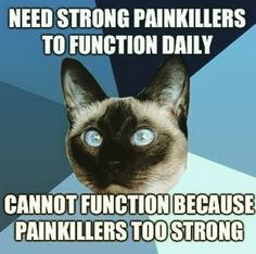 Need strong Painkillers to function daily - Cannot function because Painkillers Too Strong --  ah, cancer, you are a bastard.