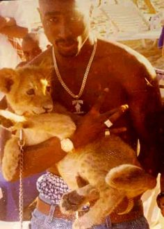 This is what I call RARE. Is this a pic of Tupac holding Simba! Collage Mural, Bedroom Wall Collage, Photo Wall Collage, Tupac Wallpaper, Rap Wallpaper, Aesthetic Iphone Wallpaper, Tupac Pictures, Tupac Art, Mode Hip Hop
