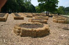 A different twist on raised beds and strawbale gardening. A different twist on raised beds and strawbale gardening. Hay Bale Gardening, Strawbale Gardening, Raised Garden Beds, Raised Beds, Farm Gardens, Outdoor Gardens, Lawn And Garden, Vegetable Garden, Straw Bales