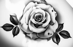 Roses, Flowers, Plants, Stencils, Pink, Rose, Plant, Royal Icing Flowers, Flower