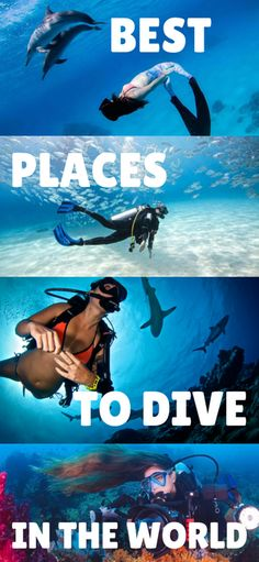 The best places in the world to scuba dive!