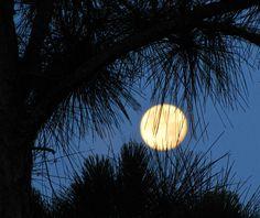 love those full moons!
