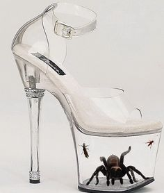 Is this what we call a ladies shoe.....? I don't think so.