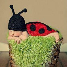 Baby Kostüm Marienkäfer #fotoshooting #babyfoto