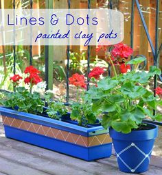 Plain pots dressed up with lines and dots using a paint pen!