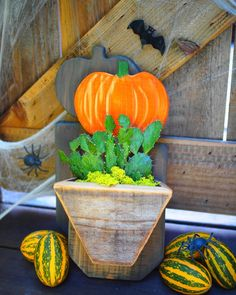 Handmade pumpkin succulent planters perfect addition to your fall decor collection. Dress up your plant wall for fall and Halloween! Succulent Pots, Succulents, Pumpkin Planter, Wooden Planter Boxes, Reclaimed Wood Wall Art, Plant Wall, Hanging Planters, Window Sill, Air Plants