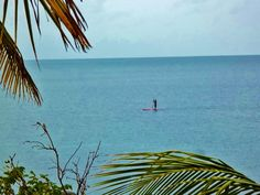 Stand up paddle boarding on Nail Bay