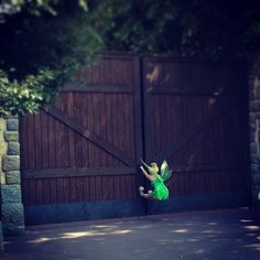 let me in! SO cute! I worked there !! Its the gate up in Big Thunder Ranch leading to back stage..we ran the goats through :)