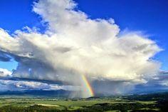 Llueven colores en Oregón El afortunado Chris Liedle tomó esta fotografía la semana pasada en Eugene, una ciudad de Oregón (EEUU).  Estaba...