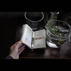 1週間が終わり、また1週間が始まった。 #nolty#journal#journaling#planneraddict#planner#plannergirl#plannerlove#stationery#fpgeeks#fountainpen#souveran#leica#leicat#handsinframe#能率手帳#おっちゃん手帳#手帳時間#手帳タイム#能率手帳#文房具#万年筆#スーベレーン#ライカt