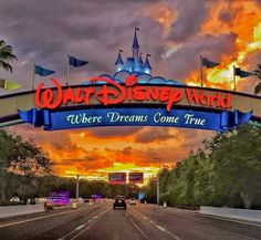 Disneyland Trip, Disney Trips, Disney Parks, Walt Disney World, Cute Disney Pictures, Disney World Pictures, Disney World Halloween, World Wallpaper, Park Pictures