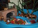Animals in Winter Sensory Table: Forest trees, forest animals that hibernate, migrate, or just live in the snow, leaves, cave, white popcorn pieces