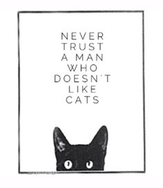 Never Trust A Man Who Doesn't Like Cats