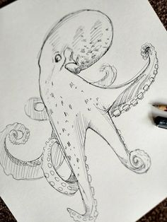 Octopus Pen Drawing by LocketDesign on Etsy