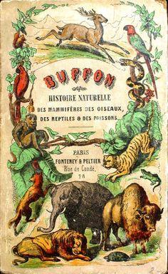 Printed Matter - Book Cover - Histoire Naturelle, Buffon
