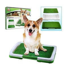 Vision As Seen On TV Puppy Potty Trainer Indoor Grass Training Patch #puppypottytrainingtips #puppytrainingpotty