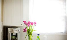 7 DOs & DON'Ts to Combat Kitchen Germs.  Care2