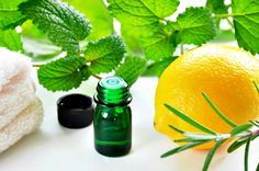 6 Best Essential Oils For Neuropathy - Natural Recipes for Nerve Pain Melaleuca, Cold Sore Remedy Overnight, Doterra, Get Rid Of Cold, Essential Oils For Colds, Lemon Balm, The Balm, Herbalism, Remedies
