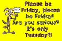 Are you serious? It's only Tuesday? tuesday tuesday quotes tuesday pictures tuesday images please be friday wheres friday Humor Funny Good Morning Quotes, Good Day Quotes, Its Friday Quotes, Morning Humor, Work Quotes, Quote Of The Day, Daily Quotes, Wisdom Quotes, Lol So True