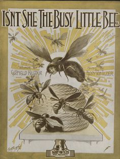 Isn't She the Busy Little Bee Old Sheet Music, Vintage Sheet Music, Vintage Books, Music Sheets, Bee Wings, Buzz Bee, Sting Like A Bee, Bee Creative, Postcard Art