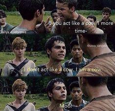 Why does this make me laugh soooo much??? Oh ya bc it's SOOO funny