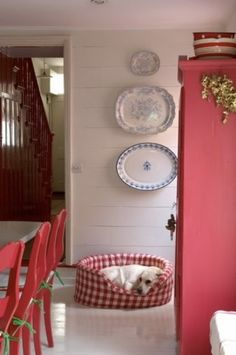 love the wall, red accents and the gingham dog bed...everything
