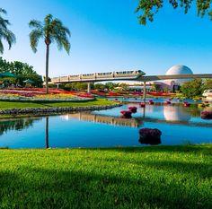 Epcot, and Monorail #WDW #Disney #WaltDisneyWorld  #HappiestPlaceOnEarth #CelebrateADreamComeTrue #CelebrateTheMagic #MyHome #WhereDreamsComeTrue #WishUponAStar