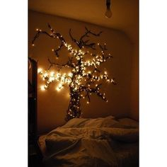 Create a light tree on the small wall between the bathroom and entry doors.  Add floating book shelves and art around it.