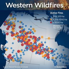 41 Best Forest Fires and National Strategies images