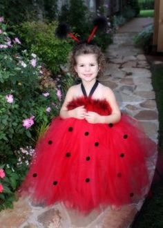 lady bug tutu dress
