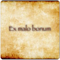 Ex malo bonum.  Good out of evil. #latin