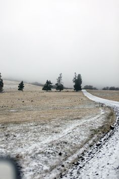 Dirt road, country road, on the road again, curves, trees, grey, snow, Winter, beauty of Nature, photo.