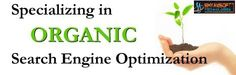 The #OrganicSEOIndia for more website visibility  The e-commerce companies are heavily dependent on the concept of Search Engine Optimization or the SEO methods. This is comparatively an easy method as the results are displayed instantly and it also takes less time. Read more... http://www.slideshare.net/shyamtechft/the-organic-seo-india-for-more-website-visibility