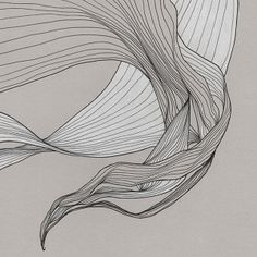 in memoriam - Tracie Cheng Art : Line art exercise Abstract Illustration, Abstract Art, Line Drawing, Painting & Drawing, Tracie Cheng, Ap Art, Organic Shapes, Organic Art, Elements Of Art
