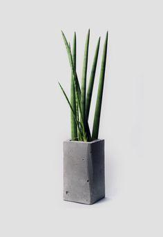Concrete planter by IAM Architecture Studio
