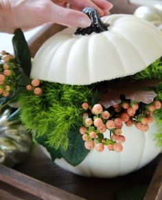 Have you heard? Halloween's over! Put away those orange pumpkins and create a whole new look for Thanksgiving with our white pumpkin centerpiece. It's quick, easy and inexpensive—three words every crafter loves to hear!