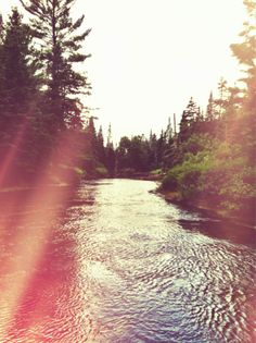 sunlight and streams