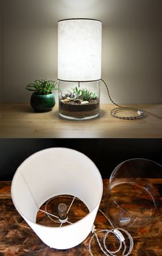 DIY lamp with cactus terrarium.