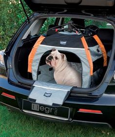 And if you really, REALLY want to up your dog's camping game, get them their own personal tent!
