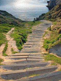 Ocean Way, bodega bay. See my blog - http://www.bernadettemanzano.com