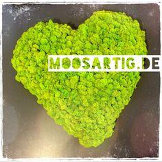 moosartig - das Bauhaus zum Selbermoosen