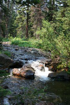 Trail Creek, Snowy Range, Wyoming