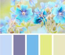 Design Seeds blue green