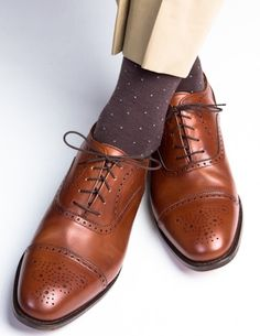 Dapper Classics Brown with Sky Blue Pin-Dot Fine Merino Wool Sock