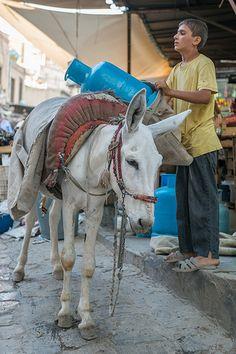 Mardin . Bazaar . Turkey