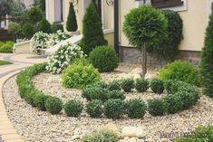 v6 Lawn And Landscape, Landscape Design, Garden Park, Front Yard Landscaping, Landscaping Ideas, My Secret Garden, Topiary, Outdoor Gardens, Home And Garden